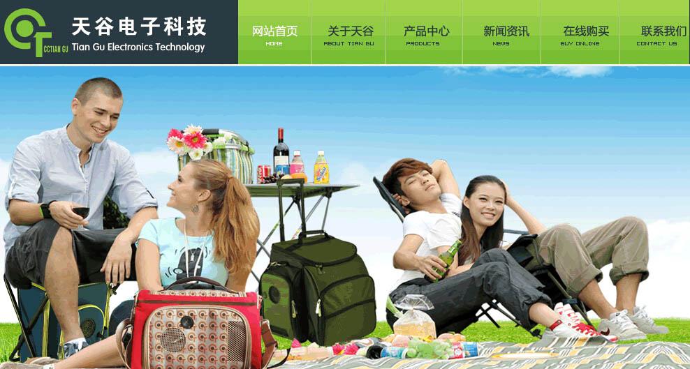 广州天谷电子