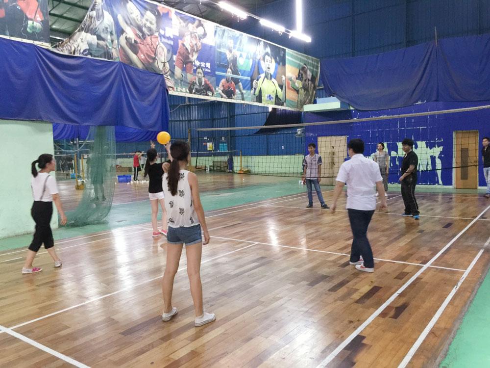 传导网络-气排球比赛-气排球活动