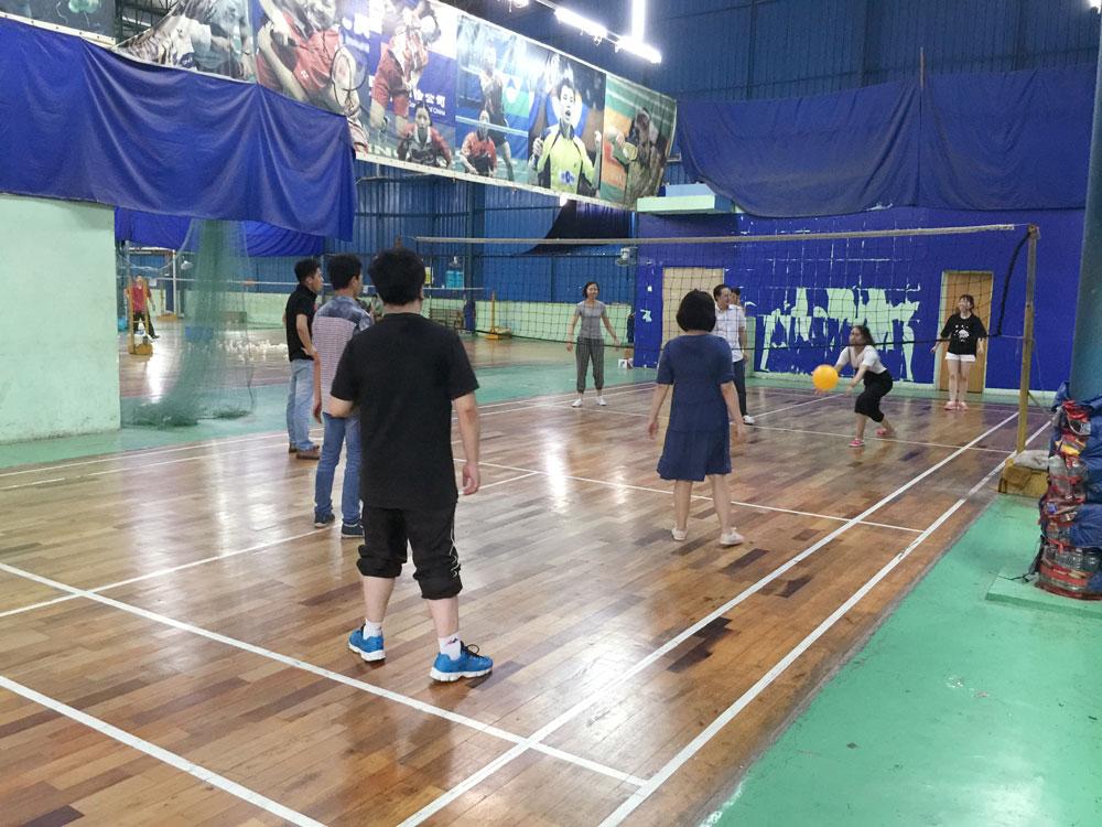 传导网络-气排球比赛