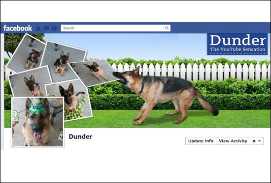 Dunder-网页设计-传导网络